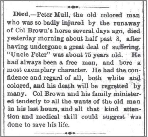 Daily_Charlotte_Observer__13_Jun_1874